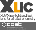 Logo XLic